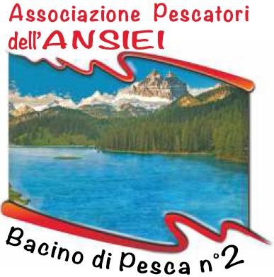 Logo Bacino 2 Ansiei