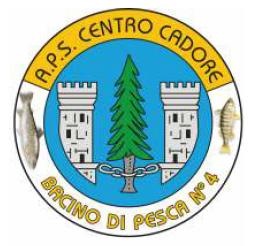 Logo Bacino 4