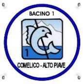 Logo Bacino 1
